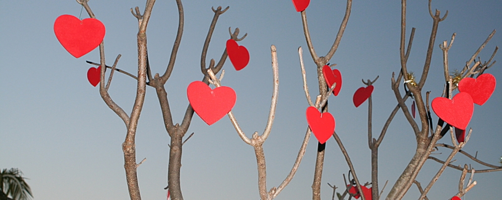 A tree with hearts on